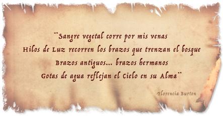 pergamino-poesia-florenciaburton-