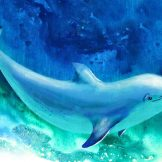 Dolphin Frequency 4