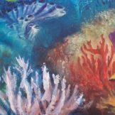 reef detail 1