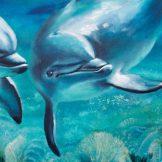 _white-reef-detail--florencia-burton-dolphins-painting-art-water-kauai