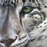 the-purpose-florencia-burton-snow-leopard