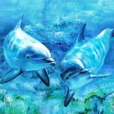 florencia-burton-visionary-art-dolphins-delfines