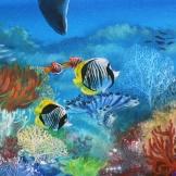 abundance-dolphin-florencia-burton-detail2