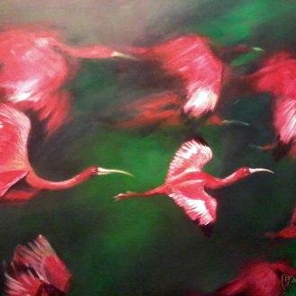 detail-Ibis-escarlata-bandada-florencia-burton