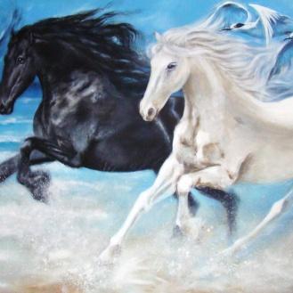 freedom-horses-florencia-burton