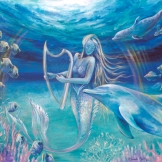 cetacean art molphinsart mermaid Portal armonico florencia burton Mermaid playing harp underwater