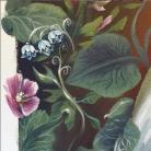 flores florencia burton visionary fine art return to nature patagonia argentina