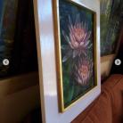 nenufar florencia burton visionary fine art return to nature patagonia argentina