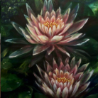 oda al amanecer water lilies nenufares florencia burton visionary fine art return to nature