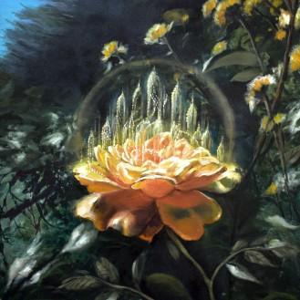 TEMPLOS DE LUZ yellow rose florencia burton