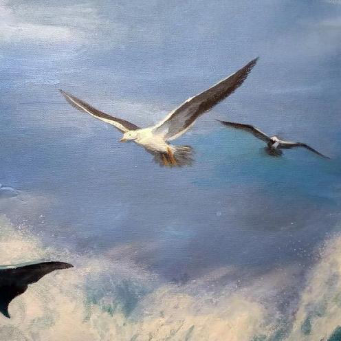 gaviota-libertad-pacifica-florencia-burton-Dolphins-on-the-waves--LIBERTAD-PACÍFICA-florencia-burton