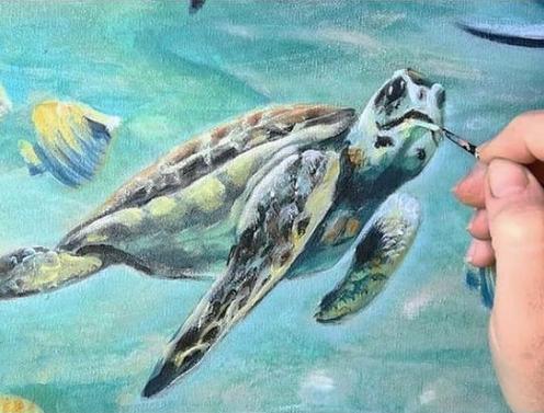 Inner-SparkLight-turtles Florencia-Burton