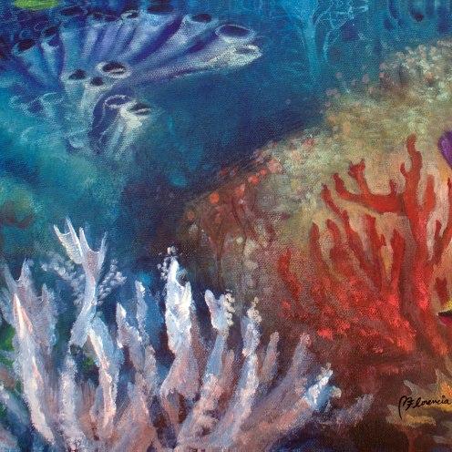 _rainbow-reef--abundance-dolphin-florencia-burton-